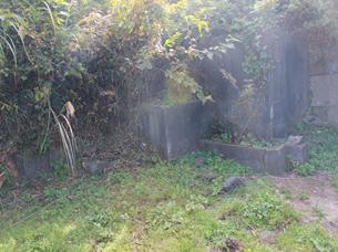 石垣(5)IMG_6625.JPG